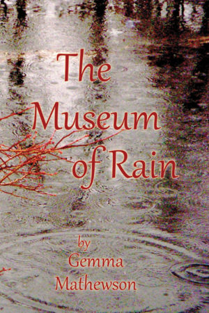 The Museum of Rain book front cover image